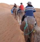 en-camello-hacia-la-jaima