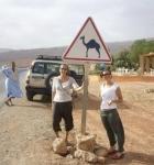 hacia-camellos